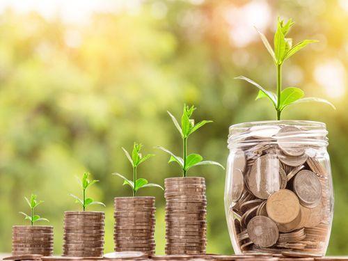 deudas familiares dinero y plantas